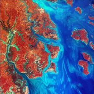 התחברות השונים - נהר נשפך מחופה של מדינת גינאה-ביסאו באפריקה לאוקינוס האטלנטי