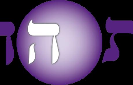 לוגו גדול 31.08