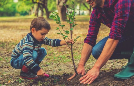 המשימה העליונה – חינוך הילדים