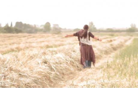 Vimeo-M-Tohar