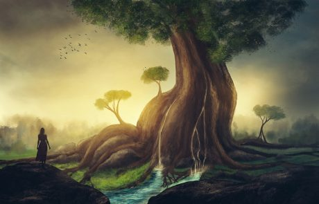 מסע הנדודים של עדן הראל